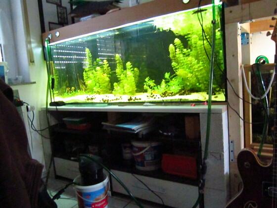 150x50x60 Aquarium mit einer Ytong-Unterschrank-Konstruktion