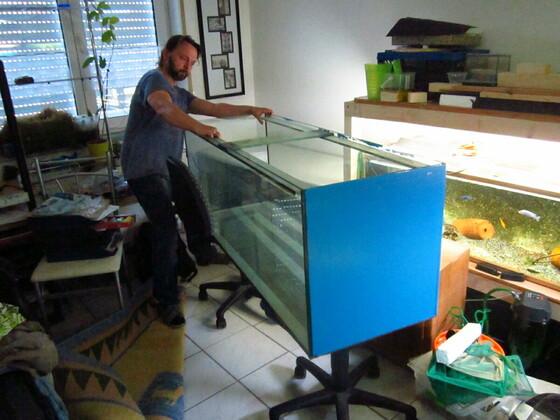 Aquarium 150x50x60 zieht um