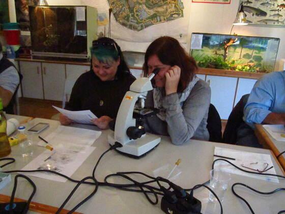 LDA-Arbeitskreis Fischkrankheiten