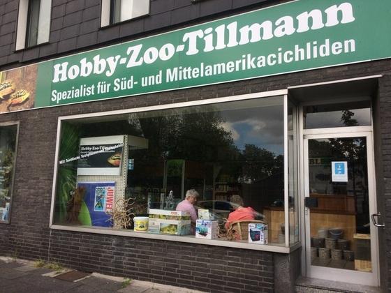 Besuch bei Thomas Tillmann