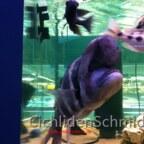 Zoo Zajac