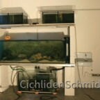 Umbau Fischraum / Garage